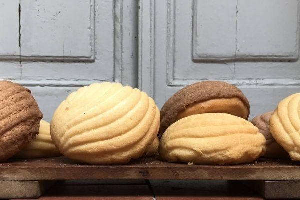 conchas mexicanas preparación